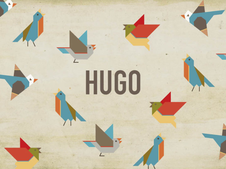 Geboortekaartje Hugo