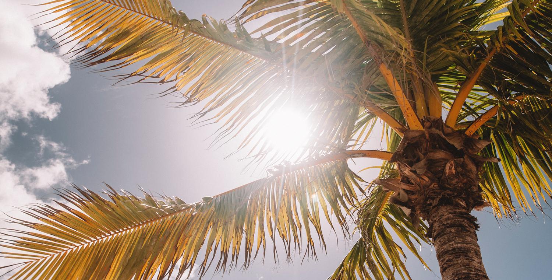 Stijlvol bij tropische temperaturen